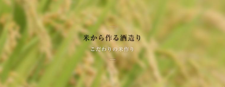米から作る酒造り