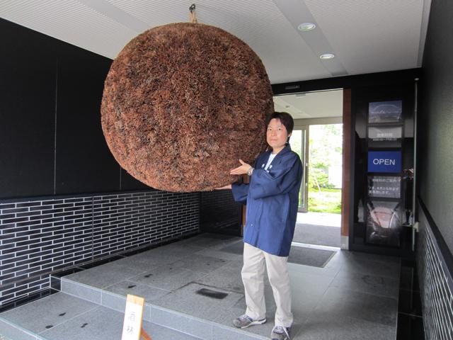 直径1.3メートルの巨大杉玉がお出迎え!